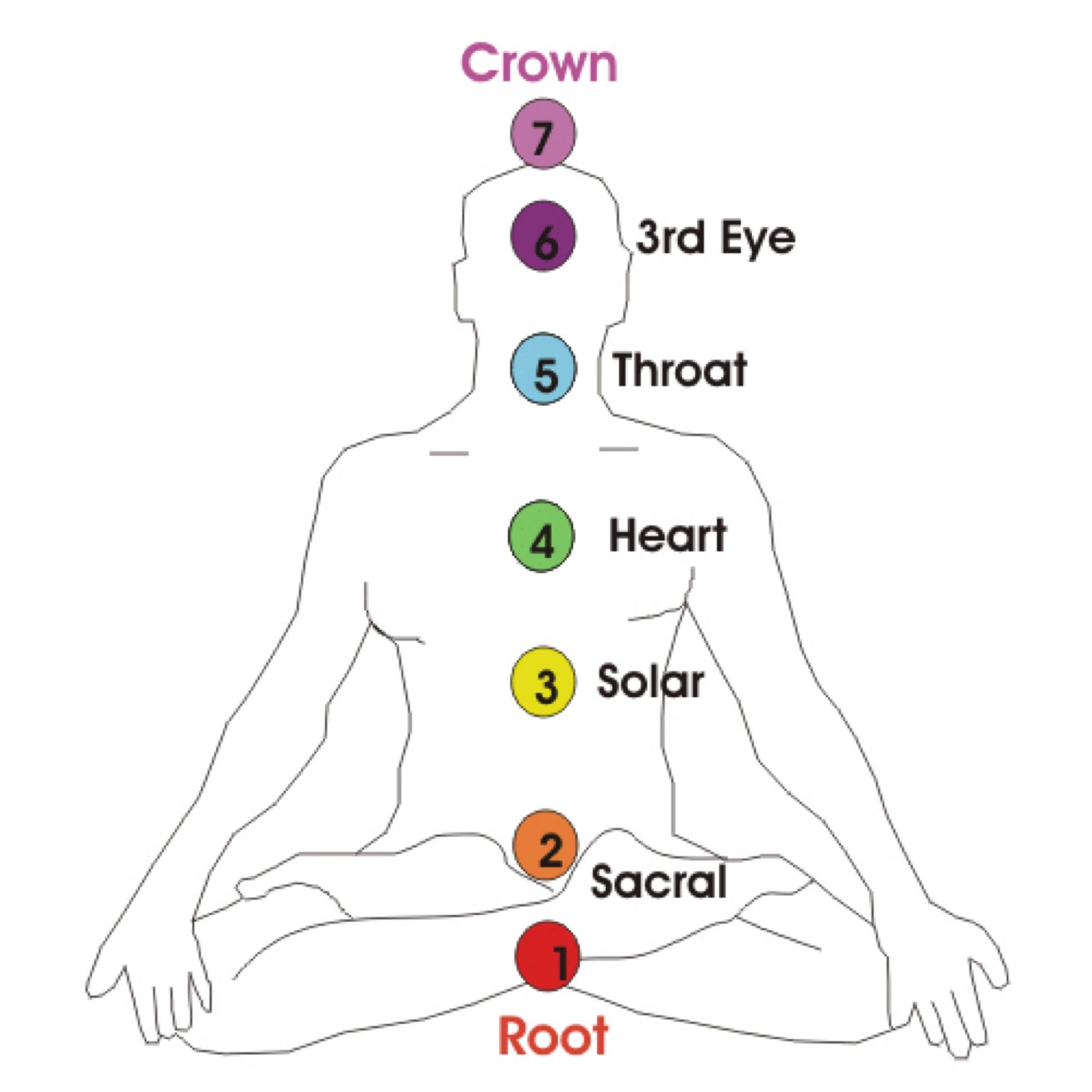 The 7 Chakras – A Beginners Guide To Your Energy System